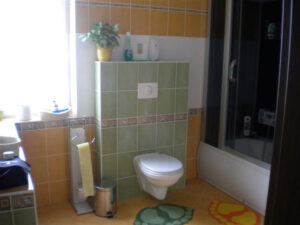 Koupelna Choustníkovo Hradiště 01